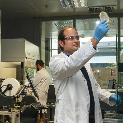 Convertir las células en nanofábricas gracias a la ingeniería metabólica