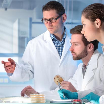 Nuestros investigadores apuestan por la innovación
